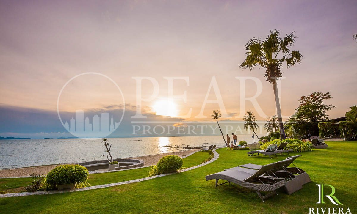 the palm-Pattaya-Wongamat-25631007-06-22-watermark-2