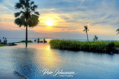 the palm - 178320390